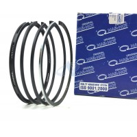 Piston Ring Set for DEUTZ (KHD) BF6L913 FC - D2506, D5206, D7506 (102mm)